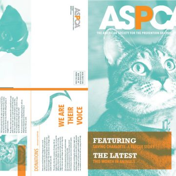 ASPCA newsletter