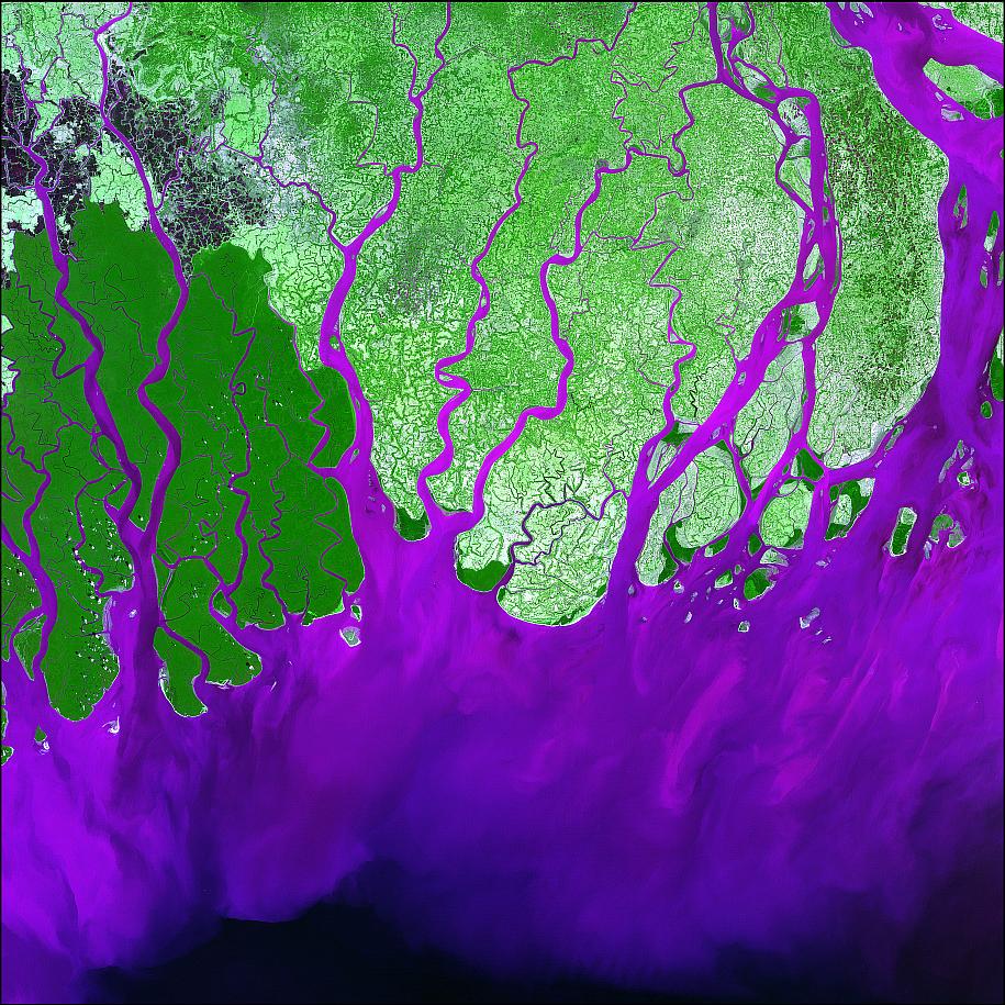 Ganges Delta