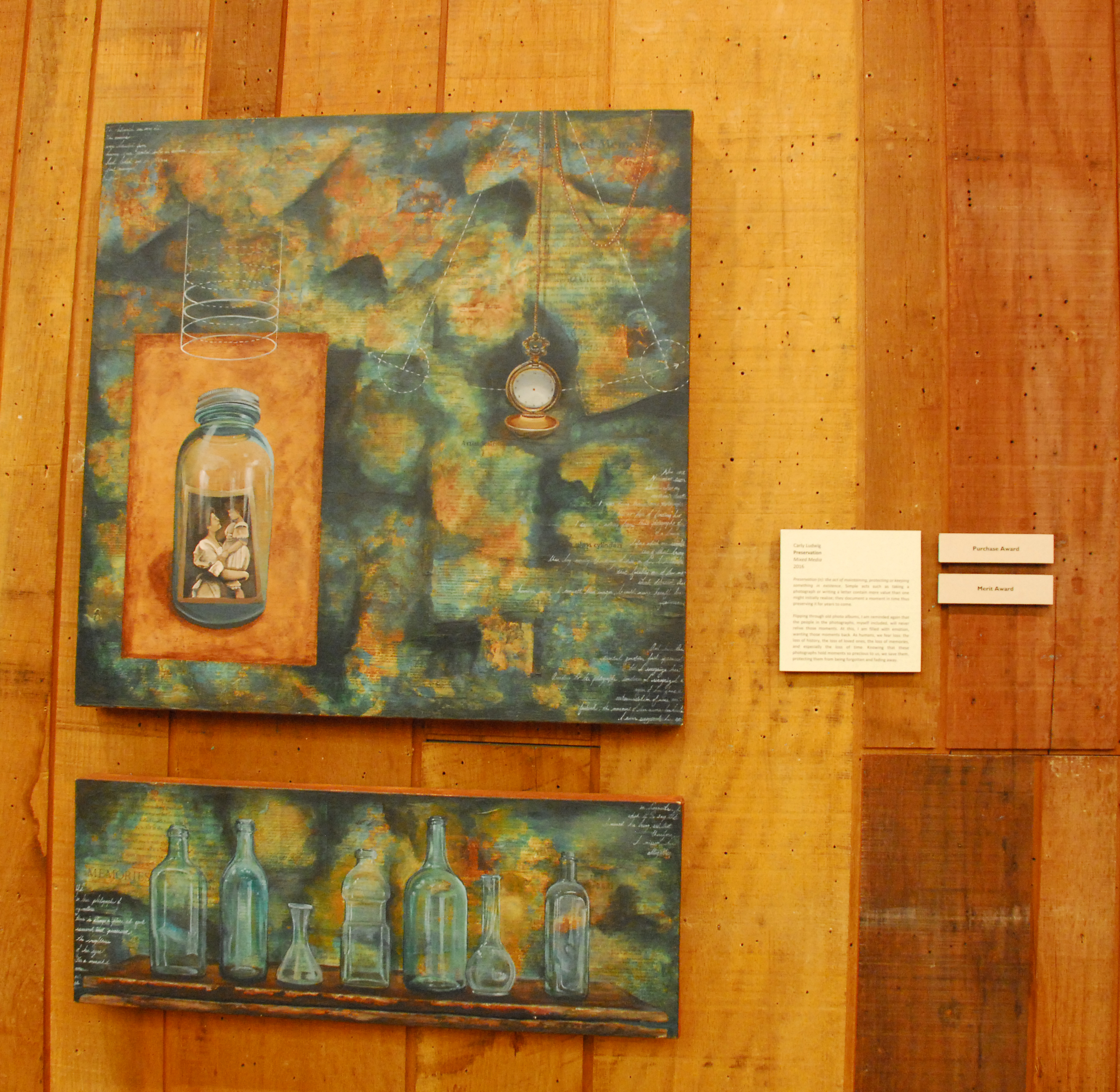Preservation by Carly Ludwig received Merit & Purchase Awards