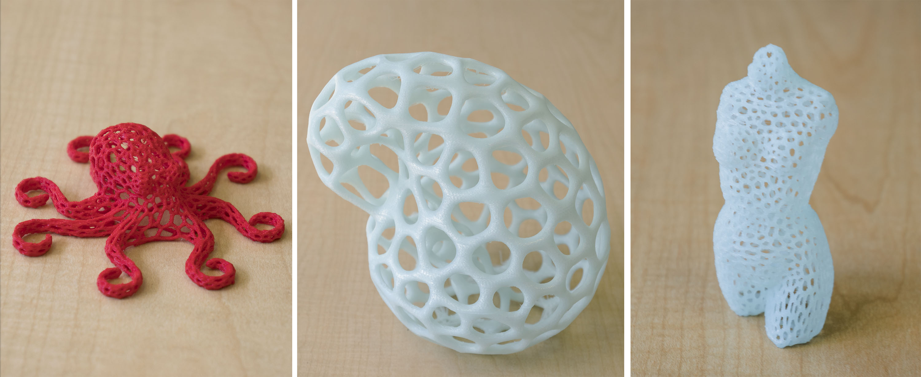 Three-dimensionally printed sculptures designed by integrated studio arts senior Sarah Reagan's group at the a2ru Emerging Creatives Student Summit