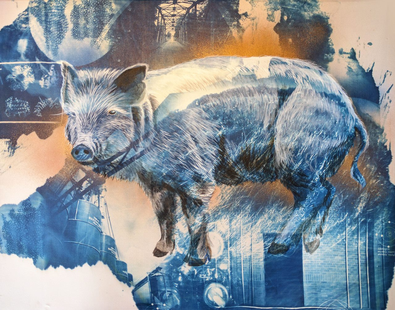 """Guinea Hog"" (cyanotype, acrylic and spray paint on muslin, 2017) by Naomi Friend"