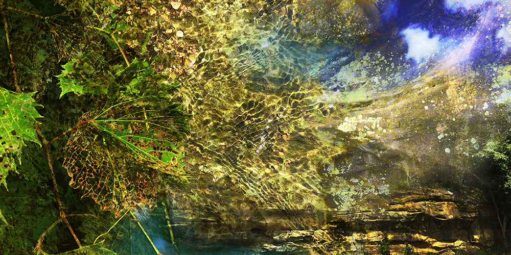 """All That Glitters"" (digital mixed media)by Carol Faber"