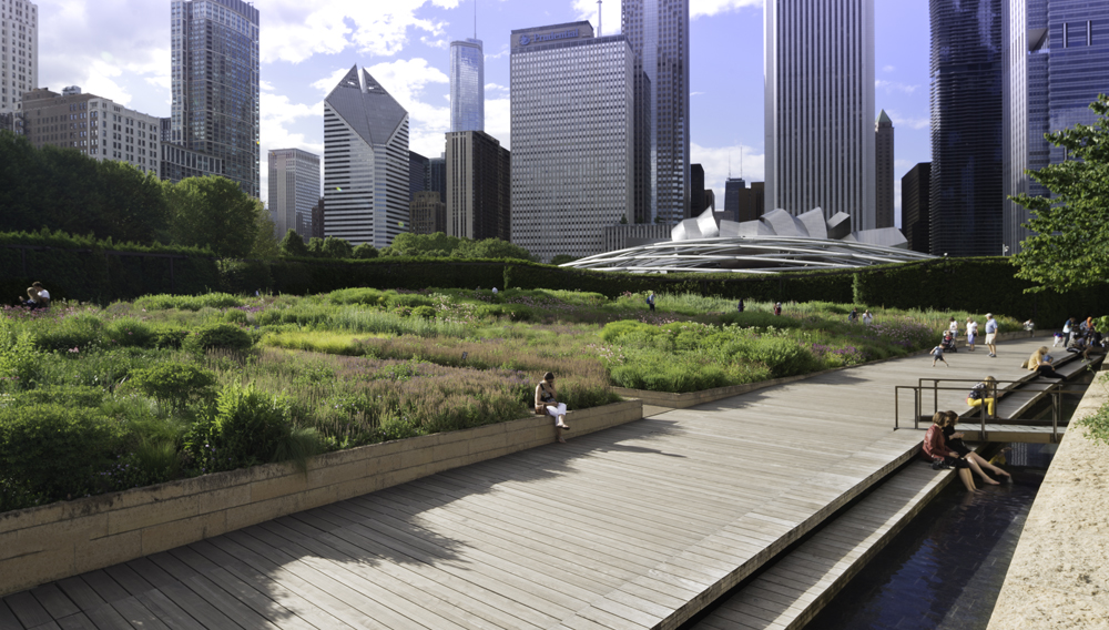 The Lurie Garden at Millennium Park, Chicago – Gustafson Guthrie Nichol