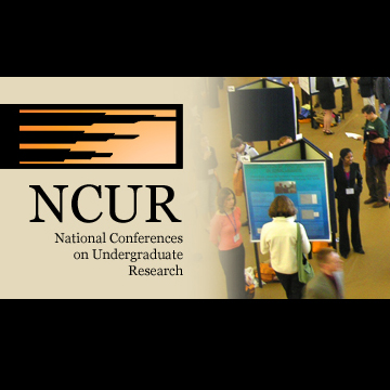 Eleven College of Design students selected for NCU