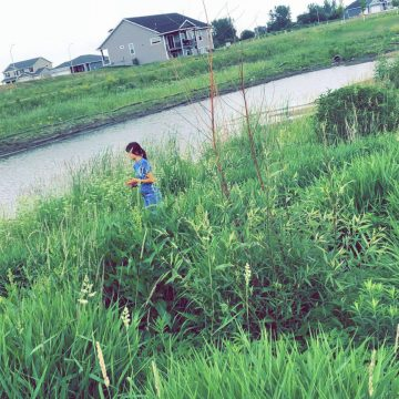 Iowa State students gain design, conservation expe