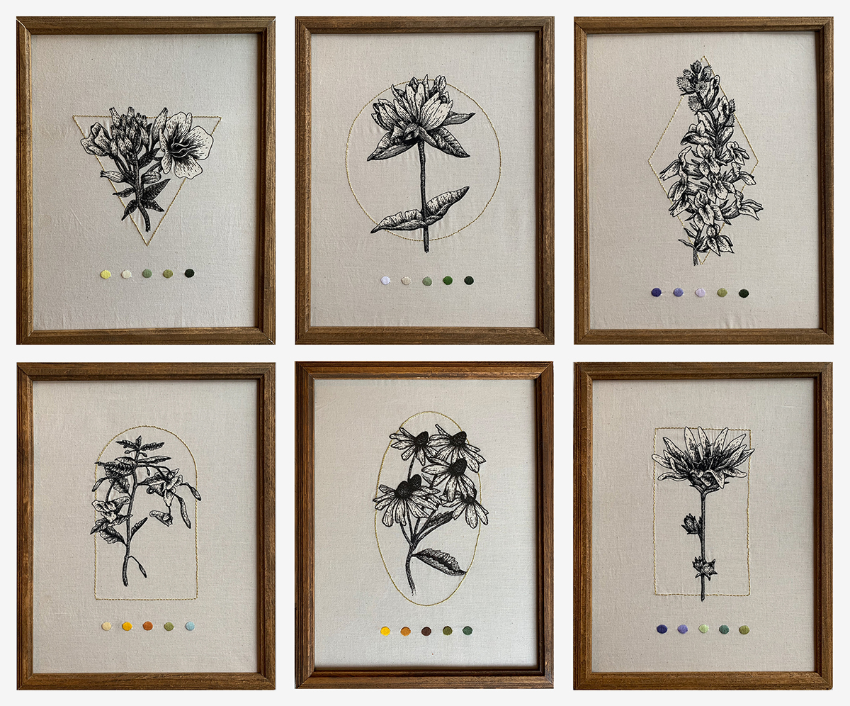 Great Blue Lobelia, Pale Gentian, Evening Primrose, Common Jewelweed, Sweet Black Eyed Susan, and Chicory flowers depicted with sketch-like stitches and adorned with a gilded shape reflecting the form and movement of the plant, and color swatches from the plant